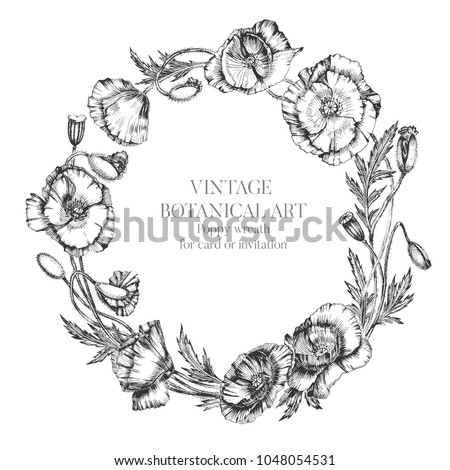 Flower wreath poppy flowers buds leaves stock vector 1048054531 flower wreath of poppy flowers buds and leaves botanical hand drawn realistic illustration with mightylinksfo
