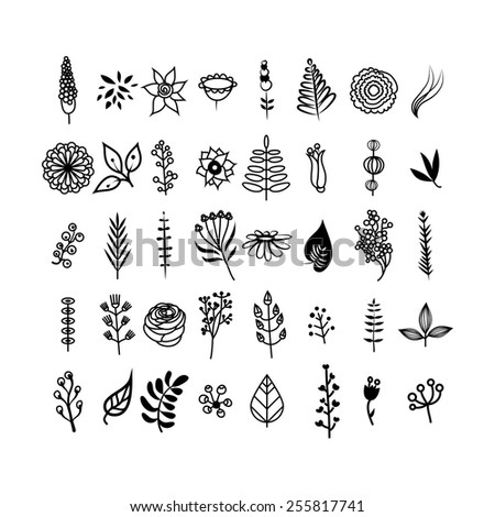 flowers and leaves set black and white - Simple Outline Pictures