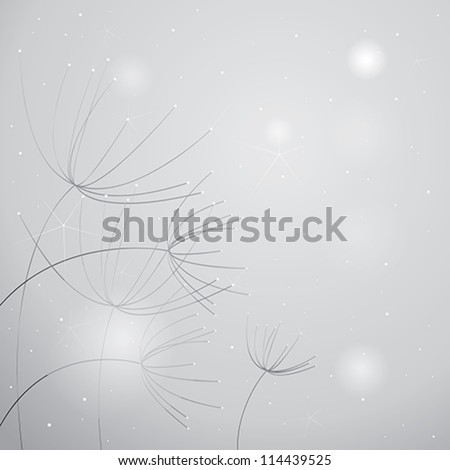 Flowers Anise / Soft black-and-white floral background - stock vector