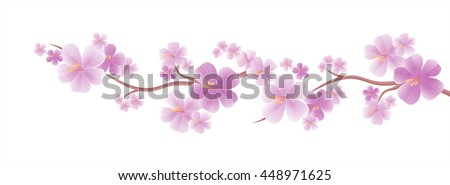 Flowers design. Flowers background. Apple tree flowers. Branch of sakura with Purple flowers isolated on White color background. Cherry blossom branch. Vector
