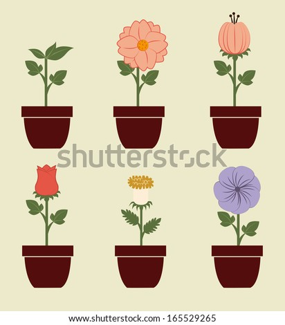 flowers design over beige background vector illustration