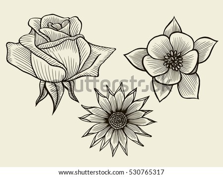Flowers hand drawn sketch flowers rose floral pattern vector illustration