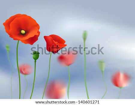 Flowers poppies on a background of sky - stock vector