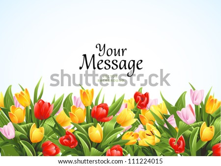 Flowers vector background with tulips - stock vector