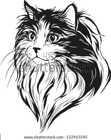 Fluffy cat - stock vector
