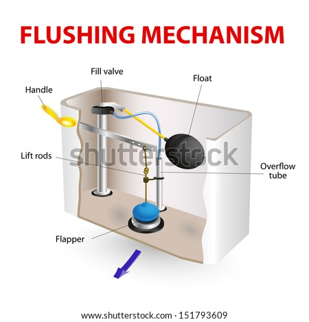 Flush Toilet Flushing Mechanism Vector Diagram