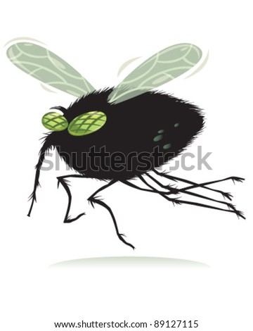 Fly - stock vector