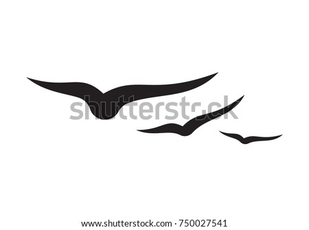 Seagull Silhouette Stock Images, Royalty-Free Images ...