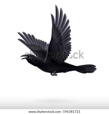 Flying black raven isolated on white background  - stock vector