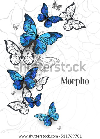 Flying Blue Butterflies morpho and white butterflies on a light abstract background. Morpho.