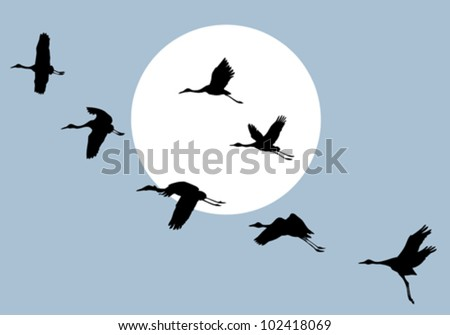 flying crane on solar background, vector illustration - stock vector