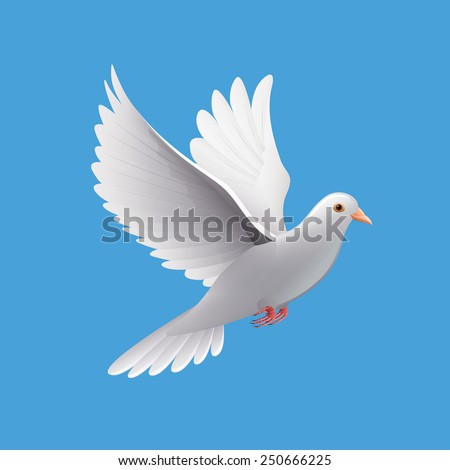 Flying dove isolated on blue photo-realistic vector ...