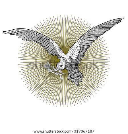 Flying Dove Olive Twig Isolated On Stock Photo Photo Vector