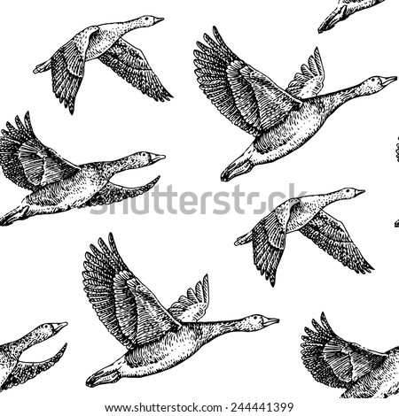Geese Flying Drawing Flying Geese Hand Drawn