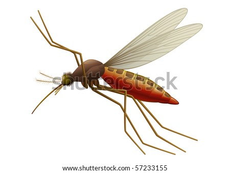 """Flying Mosquito, blood sucking insect.  """"Full compatible. Created with gradients."""" - stock vector"""