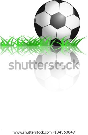 Football ball on the grass. Vector Illustration - stock vector