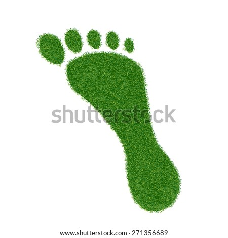 Footprint of grass. Vector image. - stock vector