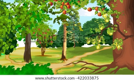 forest - stock vector