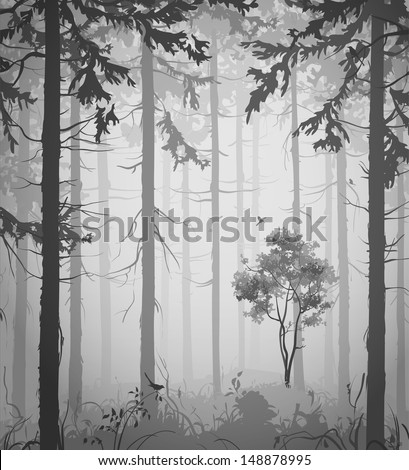 forest air landscape with birds, black and white, vector illustration - stock vector
