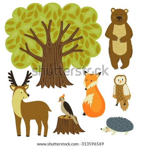Forest animals isolated on white. Set of tree and wild animals: bear, deer, fox, urchin, owl, woodpecker. Cute cartoon characters. Hand drawn woodland elements are ideal for children's design. - stock vector