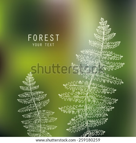 forest background with fern. hand drawn - stock vector