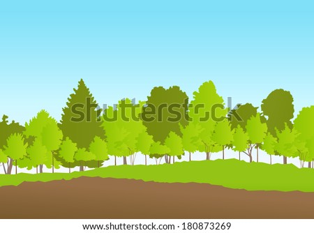 Forest in summer vector background landscape - stock vector