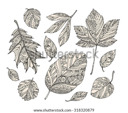 Forest leaves isolated on white background. Vector ornamental artwork. Set collection. Bohemia concept. Black and white, beige - stock vector