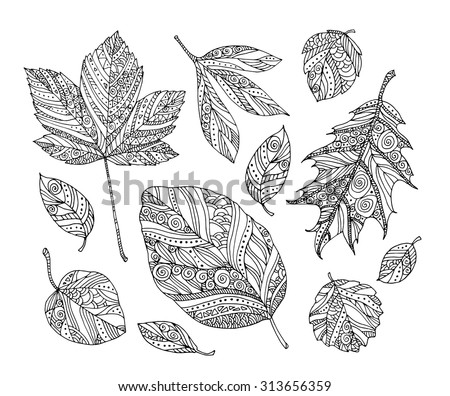 Forest leaves. Vector. Hand drawn artwork. Set collection. Bohemia concept for wedding invitations, cards, tickets, congratulations, branding, boutique logo, label. Web and mobile interface template - stock vector