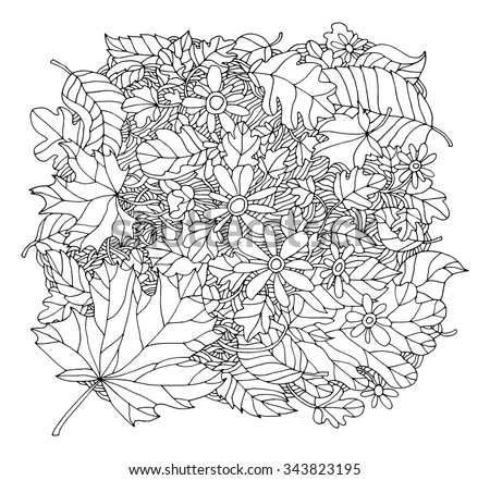 Forest maple, oak, linden leaf, chamomile flower, grass field. Vector hand drawn artwork. Coloring book page for adult. Bohemia concept for invitation card, ticket, branding, logo, label. Black, white - stock vector