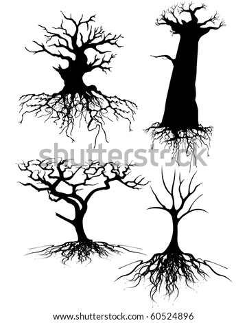 Four different Old tree Silhouettes with roots - stock vector
