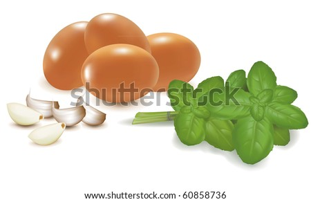 Four eggs with basil and garlic Vector. - stock vector