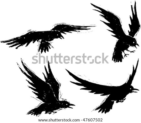 Four illustrated grungy crows. Vector file. Each crow is on a separate layer. - stock vector