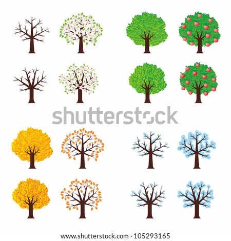 Four season trees, vector illustration - stock vector