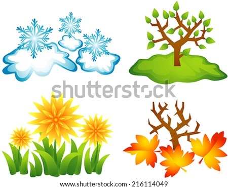 Four stylized illustrations of seasons, winter, spring, summer, autumn. Snow and snowflakes, grass and yellow flowers, tree with leaves in the meadow, maple and red fallen leaves. - stock vector