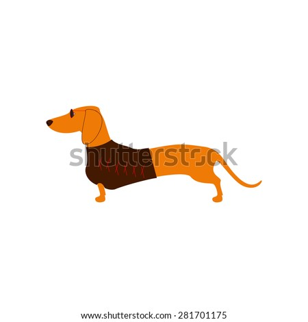 Foxy colored dachshund in glasses with dark lenses and red frame and brown waistcoat decorated with red pattern isolated on white background. Logo template, design element - stock vector