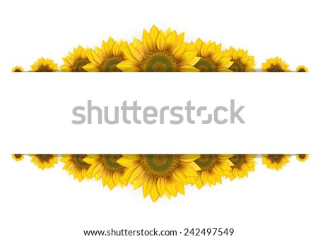 Frame of sunflowers on a white background - stock vector