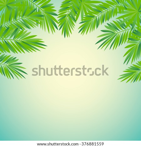 frame of tropical palm leaves vector illustration