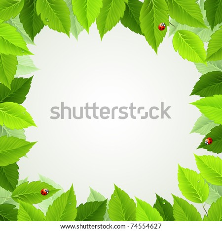 frame with fresh green leaves and ladybirds - stock vector