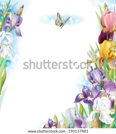 Frame with Iris flowers