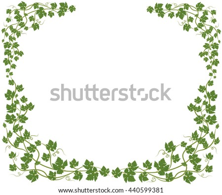 frame with vine leaves on white background