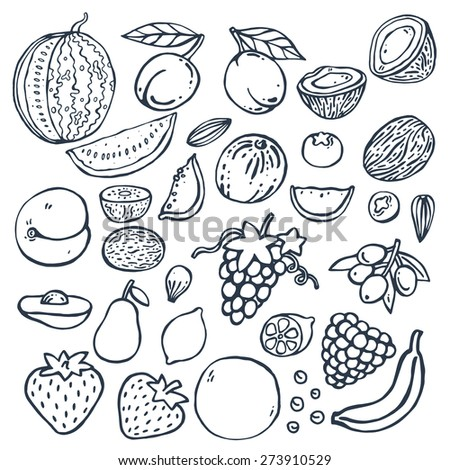 Freehand doodle drawing fruits . Vector illustration. Set