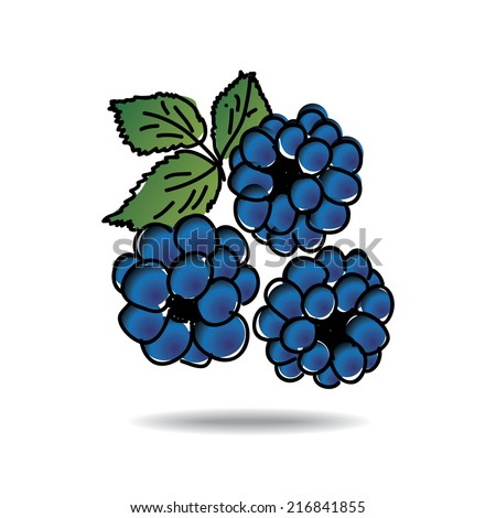Freehand drawing dewberry icon - vector eps 10 illustration - stock vector