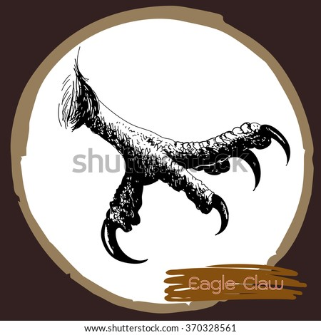 freehand sketch illustration of eagle claw, hawk bird doodle hand drawn - stock vector