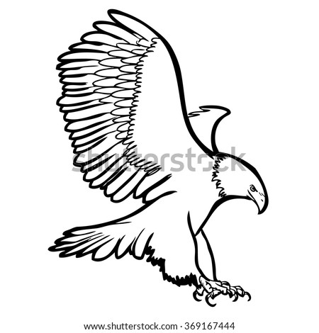 falcon in flight northern goshawk wiring diagram