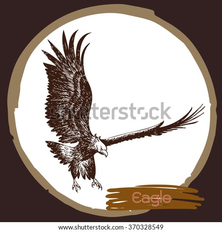 freehand sketch illustration of eagle, hawk bird doodle hand drawn - stock vector