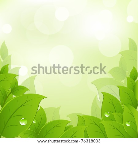 Fresh And Green Leaves, Vector Illustration - stock vector