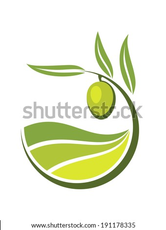 Fresh curling green cartoon olive logo with grades and quality of olive oil depicted by levels in shades of green in an organic bio concept - stock vector