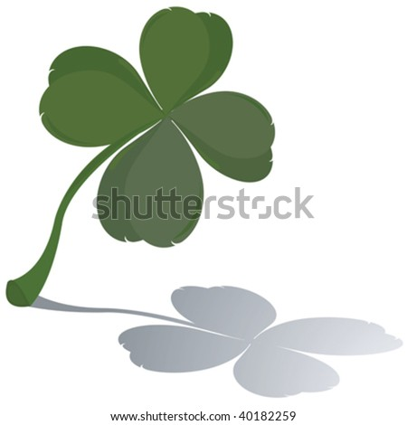 Fresh four leaf clover with reflection - stock vector