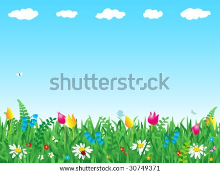Fresh green grass and wild flowers horizontal vector background ( for high res JPEG or TIFF see image 30749374 )