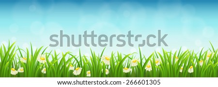 Fresh green grass, daisies and blue sky, vector illustration - stock vector